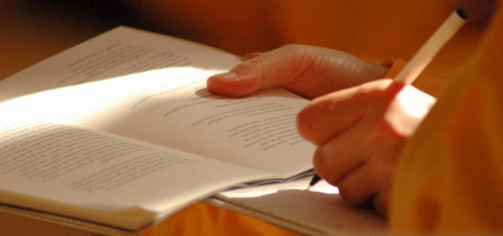 Study Programme BANNER(FP) - Website